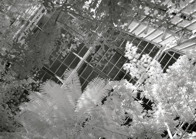 2012 for Cleveland botanical gardens parking